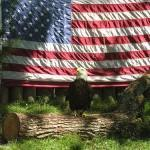 U.S. Flag with Bald Eagle in Foreground