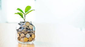 Young plant growing from coin jar, growing investments concept.