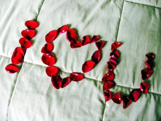 "Rose Petals Spelling ""I Love You"""